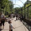 Petit-déjeunez au Zoo !