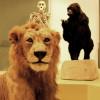Afro Wild Zombies + Blondin au Musée d'Histoire Naturelle