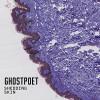 «Shedding Skin» de Ghostpoet