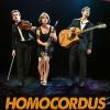 Homocordus – une histoire de la musique