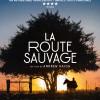 «La Route Sauvage» : Le périple d'un ado et d'un cheval à travers l'Amérique des laissés-pour-compte