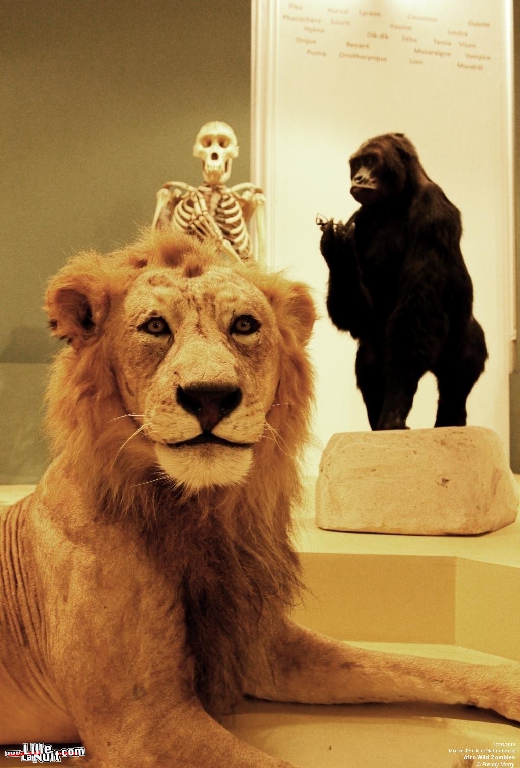 Ce dimanche 5 avril 2015, les musées sont gratuits !