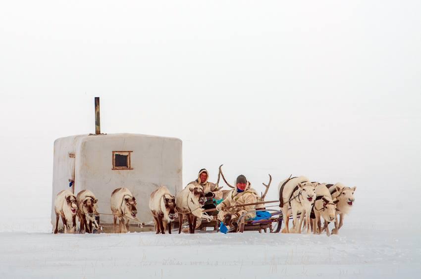 L'Arctique par Jacques Ducoin
