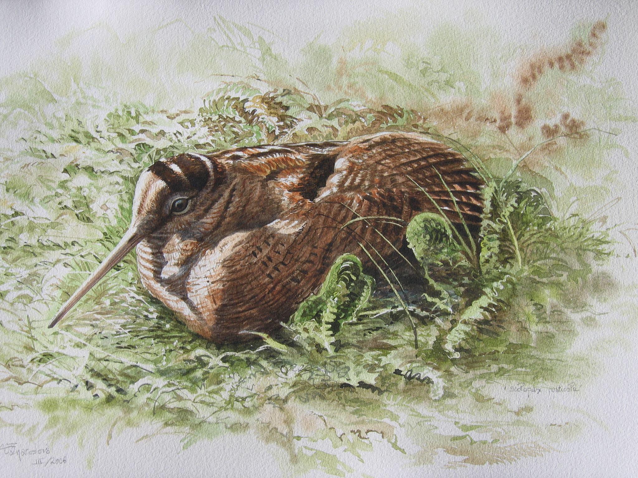 La Ferme naturaliste – Regards sur la faune et sur la flore