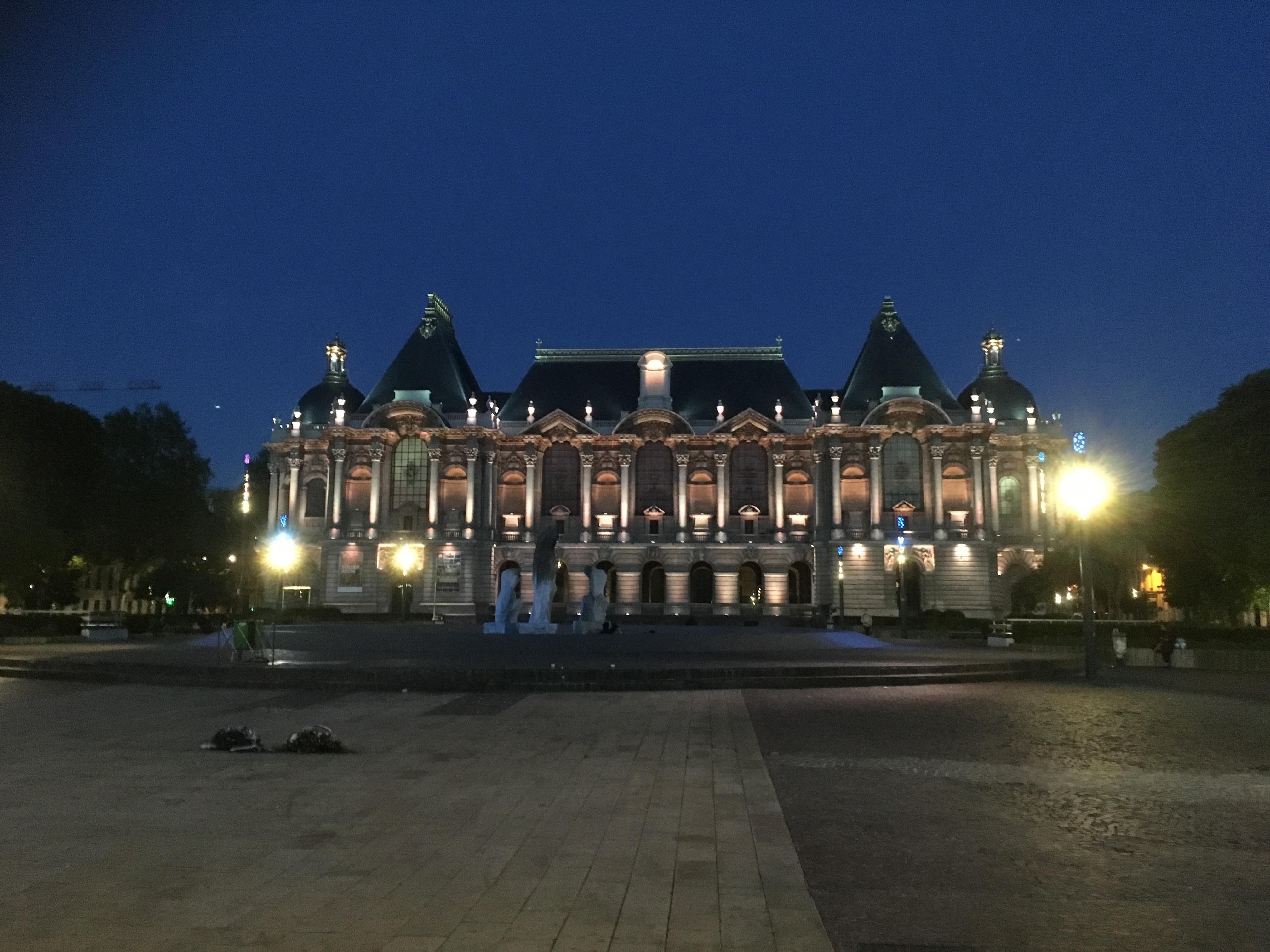 Les conférences en ligne du Palais des Beaux-Arts de Lille