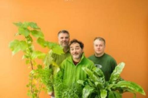 Concert Jazz : «Développements durables» par le trio vert