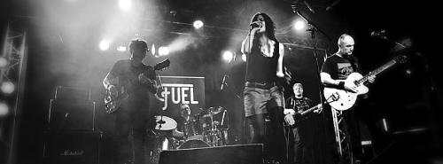 Fuel en live pour la fête de la musique