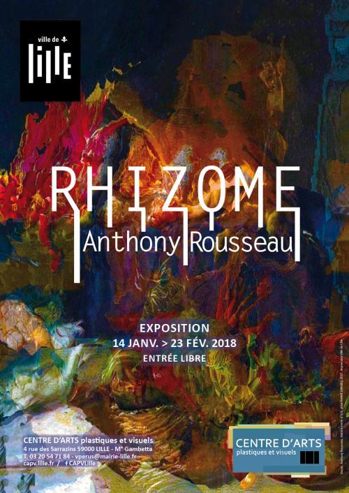 Exposition rhizome par Anthony Rousseau