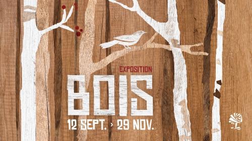 Bois, l'exposition au Colysée