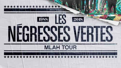 Les Négresses Vertes pour les 30 ans de «Mlah»
