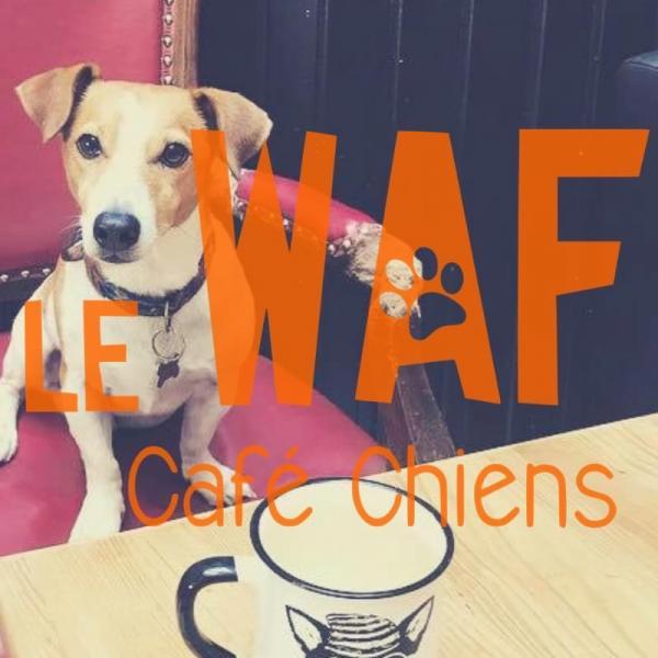 Le Café Chiens Le Waf a besoin de vous !