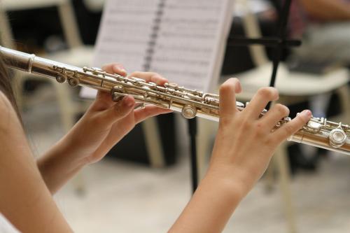Bizet, Koppel, Mozart au programme de ce concert