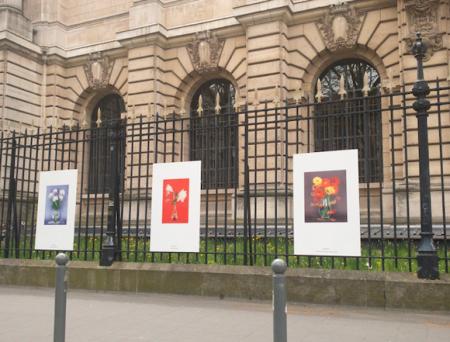 Des bons plans culturels pour les étudiants à Lille et dans la métropole !