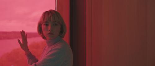 «Swallow» : Un thriller anxiogène, engagé et féministe